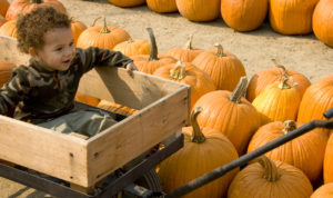 7 Fun Fall Activities for Kids, Toddlers, and Babies